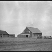 Cover image of Farm buildings, [Barnes farm, North Dakota?]
