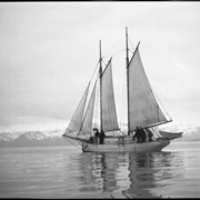 Cover image of Sailing schooner
