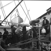 Cover image of Passengers embarking on ship