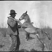 Cover image of Ole Garrett with pony
