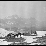 Cover image of Barnes family with pack train at Pipestone Pass on trip to Kootenay Plains