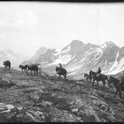 Cover image of Barnes family with pack train on trail near Pipestone Pass