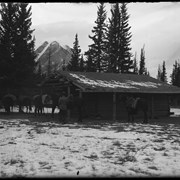 Cover image of Barnes cabin at Kootenay Plains, Elliott Barnes on step, Elliott Peak in background