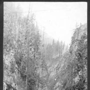 Cover image of [840]. The Albert Canyon, Selkirks, B.C.