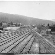 Cover image of 819. Donald, B.C. from station yard
