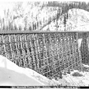 Cover image of 651. Mountain Creek Bridge, Selkirks, 164 ft. high, 1086 ft. long