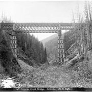 Cover image of 648. Surprise Creek Bridge, Selkirks, 180 ft. high