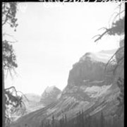 Cover image of Columbia Icefield trip / Lewis Freeman