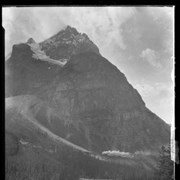 Cover image of Untitled : [train in Kicking Horse Valley at foot of Mount Stephen]