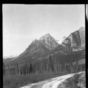 Cover image of 303. On Johnston Canyon road