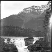 Cover image of 29. Athabasca Falls, Icefield trip?