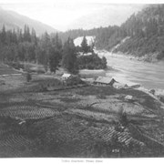 Cover image of 275. Indian Rancherie, Fraser River