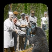 Cover image of [Cook feeding bear]