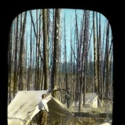 Cover image of Burnt Camp on North Fork [Pass]