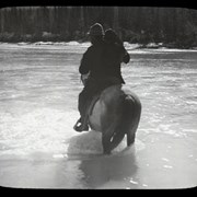 Cover image of [1 person and dog fording stream on horseback]
