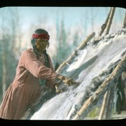 Cover image of [Unidentified woman tanning buffalo hide]
