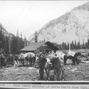 Cover image of Pack train arrives at White Man's Pass camp / 27115