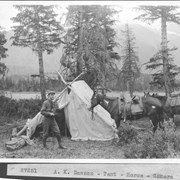 Cover image of A. K. Dawson, tent, horse, camera / 27251