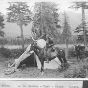 Cover image of A. K. Dawson, tent, horse, camera / 27252