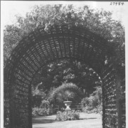 Cover image of Arbor of roses in an old English garden of Victoria / 27984