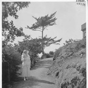 Cover image of Lady Barnard in the rock garden / 27835A
