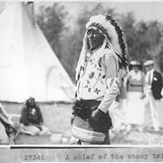 Cover image of A Chief of the Stony tribe / 27342 :  [Stoney Indians]