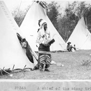 Cover image of A Chief of the Stony tribe / 27343 :  [Stoney Indians]