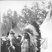 Cover image of A chief of the Stony tribe [Stoney Indians] / 27573