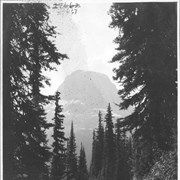 Cover image of Alpine Club camp scenes, Summit Lake, Yoho Valley / 27661