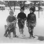 "Cover image of Canada. Ontario. Ottawa. These little Ottawa people know their business already. Refusing to be harnessed for ""mushing"" along the hillside near Canada's capital and winter carnival city, Bozo nevertheless does not object to helping out with what is neither dog-back riding nor skiing / CN181"