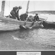 Cover image of Canada. Gaspe District . Fishing scene / CN229
