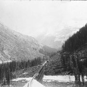 Cover image of The Loop, Glacier B.C. / On Line of Canadian Pacific Railway. 19-100