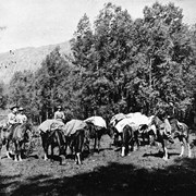 Cover image of [Hunting party preparing to depart from Indian Grounds or Brewster Corrals, Banff]