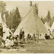 Cover image of 529. Stoney Indian Camp