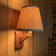 Cover image of Electric Lamp