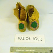Cover image of  Moccasins
