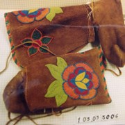 Cover image of  Moccasin