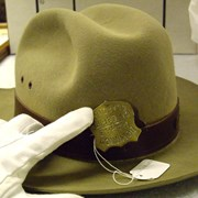 Cover image of Warden Hat