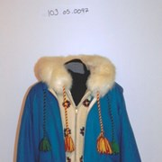 Cover image of  Parka