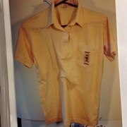 Cover image of Golf Shirt