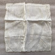 Cover image of  Kerchief