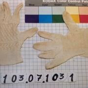 Cover image of  Glove