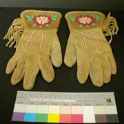 Cover image of Native; Beaded Gloves