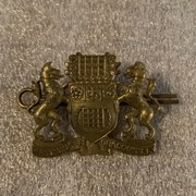 Cover image of Regimental Pin
