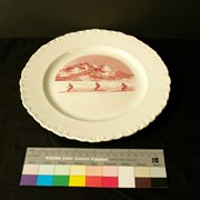 Cover image of Decorative; Dinner Plate