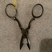 Cover image of Buttonhole Scissors
