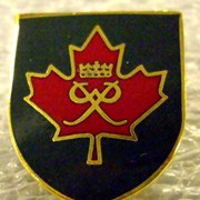 Cover image of Lapel Pin
