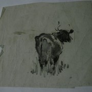 Cover image of One Cow