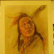 Cover image of Blackfoot Brave