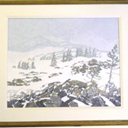 Cover image of Snow on Higher Meadows